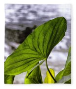 The Leaf Of A Water Plant Fleece Blanket