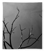 The Lightning Tree Fleece Blanket