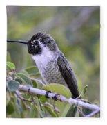 The Little Costa Fleece Blanket