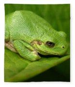 The Little Frog Fleece Blanket