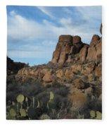 The Living Desert Of Arizona Fleece Blanket