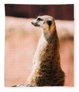 The Lonely Meerkat Fleece Blanket