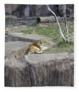 The Lounging Tiger 1 Fleece Blanket