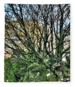 The Mossy Creatures Of The  Old Beech Forest 8 Fleece Blanket