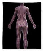 The Nervous And Skeletal Systems Female Fleece Blanket