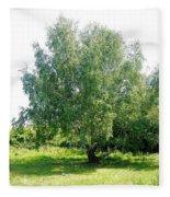 The Old Birch Tree Fleece Blanket