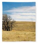 The Other Colorado Fleece Blanket