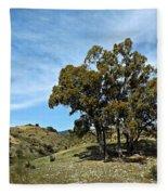 The Other Side Of Spain Fleece Blanket
