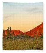 The Peak And Cardon Cacti In The Sunset In San Carlos-sonora Fleece Blanket