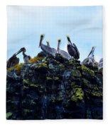 The Pelican Dance Fleece Blanket
