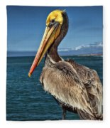 The Pelican Of Oceanside Pier Fleece Blanket