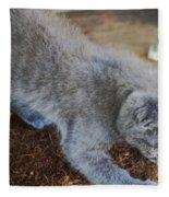 The Playful Kitten Fleece Blanket