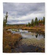 The Ponds Near Raquette Lake Fleece Blanket