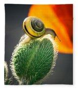 The Poppy And The Snail Fleece Blanket