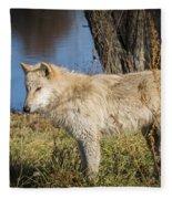 The Pup Fleece Blanket