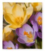 The Purple And Yellow Crocus Flowers Fleece Blanket