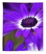 The Purple Daisy Fleece Blanket