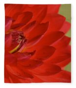 The Red Sun Dahlia Fleece Blanket