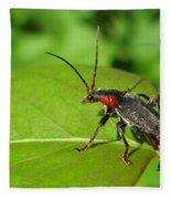 The Rednecked Bug- Close Up Fleece Blanket
