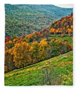 The Road To Glady Wv Fleece Blanket