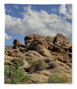 The Rock Garden Fleece Blanket