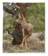 The Rudolph Dance Fleece Blanket