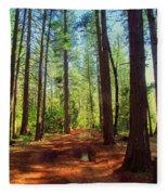 The Scenic Route Fleece Blanket