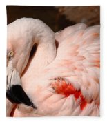 The Shy Flamingo Fleece Blanket