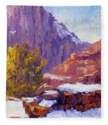 The Side Of The Road At Zion Fleece Blanket