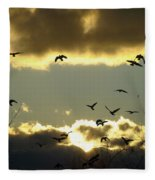The Sky Opened Fleece Blanket