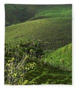 The Soft Hills Of Caizan Fleece Blanket