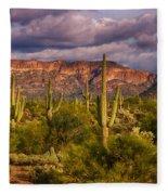The Sonoran Golden Hour  Fleece Blanket