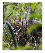 The Squirrel  Fleece Blanket
