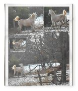 The Stallion Lives In The Country Fleece Blanket