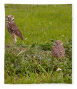 The Stares Of The Burrowing Owls Fleece Blanket