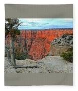 The Sun Shines On The Canyon Fleece Blanket
