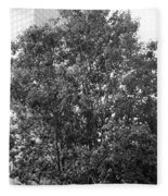 The Survivor Tree In Black And White Fleece Blanket