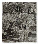 The Swinging Tree Sepia Fleece Blanket
