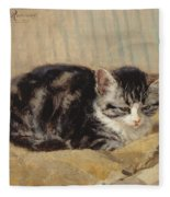 The Tabby Fleece Blanket