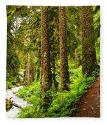 The Twisting Path Winding Through Paradise  Fleece Blanket