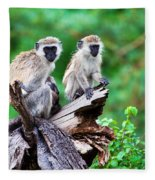 The Vervet Monkey. Lake Manyara. Tanzania. Africa Fleece Blanket