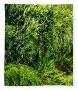 The Walls Are Alive - Seaside Abstract Fleece Blanket