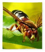 The Wasp Fleece Blanket