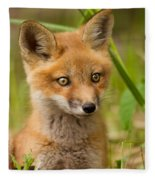 The Wild Pup Fleece Blanket