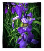 Colors Of Iris Fleece Blanket