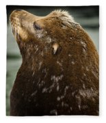 Things Are Looking Up-sealion Fleece Blanket