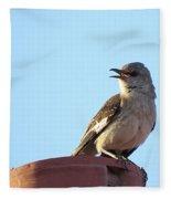 This Spring's Mockingbird Fleece Blanket