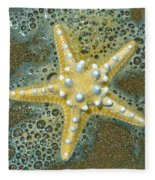 Thorny Starfish Fleece Blanket