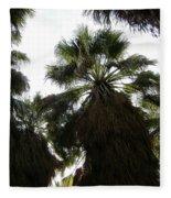 Thousand Palms Canyon Fleece Blanket