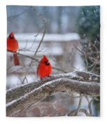 Three Amigos Fleece Blanket